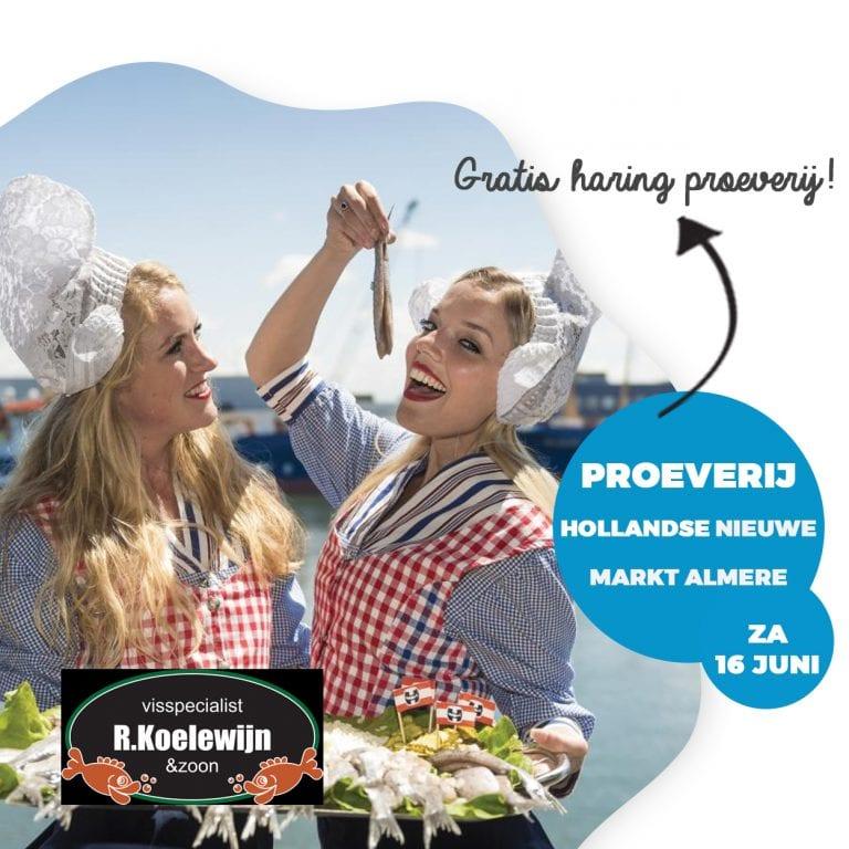 Proeverij Hollandse Nieuwe markt Almere