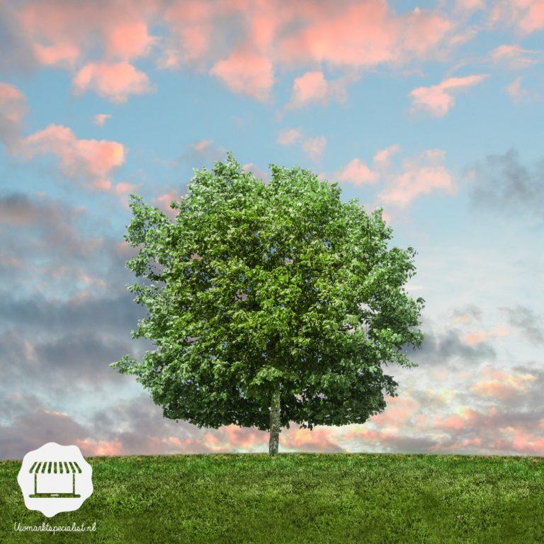 Plant een boom op Boomfeestdag