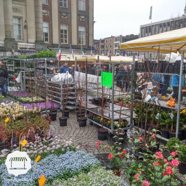 Tip: naar de markt op Goede Vrijdag